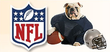 1800PetSupplies - 10% Off Super Bowl-Themed Pet Items