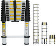 12.5 ft. Extension Telescoping Aluminum Ladder