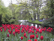 4 Nights in Holland in Peak Tulip Season w/Air