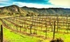 Orfila Vineyards & Winery Coupons Escondido, California Deals