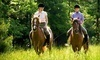Wildwood Stables Coupons Crossville, Tennessee Deals