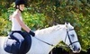 Traditional Equitation School Coupons Burbank, California Deals