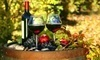 San Diego Cellars Coupons San Diego, California Deals