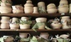 Muddy Rose Pottery Coupons Aliquippa, Pennsylvania Deals