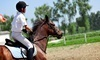 Innova Riding Stables Coupons Collegeville, Pennsylvania Deals