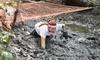 Mega Mud Run Challenge Coupons Johns Island, South Carolina Deals