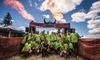 Warrior Dash Coupons North Plains, Oregon Deals