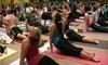 Samatone Yoga by DPYP! Coupons