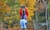 Valley Zipline Tours Coupons
