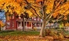 Bella Vista Bed and Breakfast Coupons
