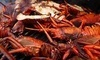 Santa Barbara Shellfish Company Coupons