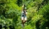 Black Mountain Thunder Zipline Coupons