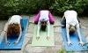 Yoga + PlusFit Coupons