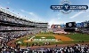New York Yankees Coupons