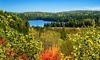 Northern Edge Algonquin Coupons