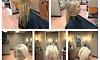 Styles by Savino at Eddio Caruso Hair Salon Coupons