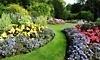 Moss Home & Garden Coupons