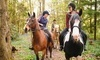 Valley View Riding Stables Coupons