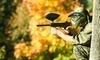 Pittsburgh Paintball Park Coupons