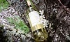 Ektimo Vineyards Coupons