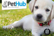 PetHub.com - June 2012 Coupons  Deals