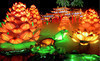 Chinese Lantern Festival Coupons Dallas, Texas Deals