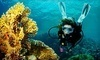 Scuba Network Coupons Deerfield Beach, Florida Deals
